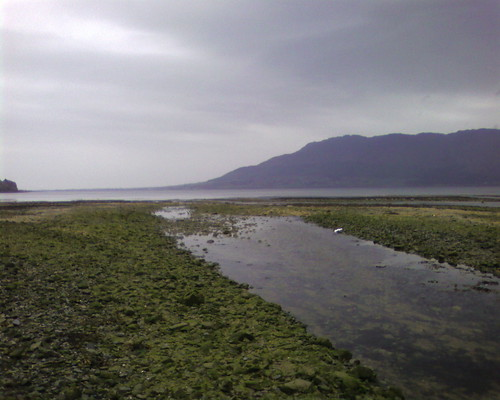 carlingford loch--and ocean beyond