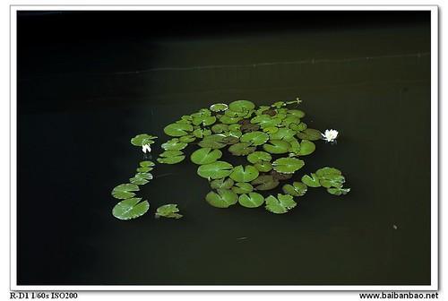 xiang-lake-shuilian-7235