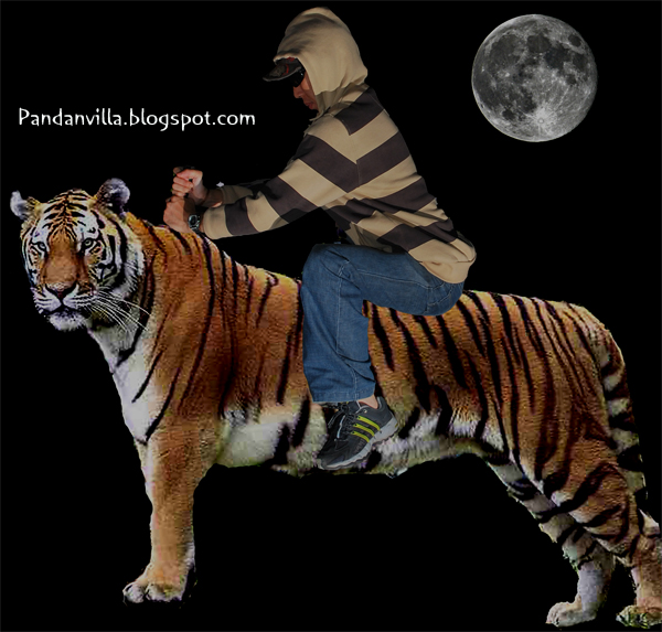 tiger ride