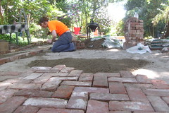 Meg laying the brick patio (pieisexactlythree) Tags: home yard garden weeds blackberry meg ivy patio