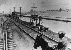 Town of Leland along Railroad tracks (tinkerbrad) Tags: old railroad people house film river mississippi leland photo track flood delta national disaster mississippiriver riverboat depot emergency livestock levee 1927 1927flood great1927flood