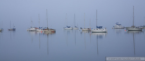Boats in the fog, Morro Bay