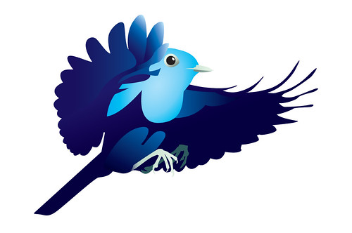 Twitter Bird by Paul Snelling, on Flickr