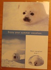 Enjoy your summer vacation.  Best vacation ever.