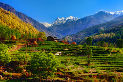 Terraced fields near Gorkha (Sunrider007) Tags: nepal mountain mountains field canon terrace farm farming peak 5d agriculture buri mkii 24105 gandaki manaslu gorkha 24105mm 5d2 5dmkii