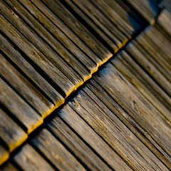 Pier abstract