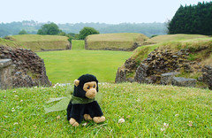 George at the Roman Amphitheatre, Caerleon, South Wales