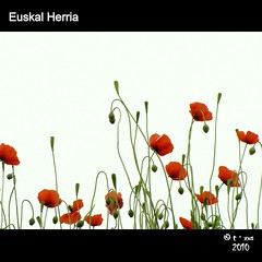 Euskal Herria (TioTxus) Tags: family flowers light red vacation people white flores flower verde green love primavera blanco luz valencia colors canon spring spain europa flag flor colores poppy bandera basque vasco roja euskal herria amapola pas txus sx10 oltusfotos tiotxus