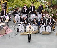 Swing Sensation