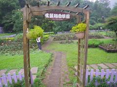 愛麗絲香草園