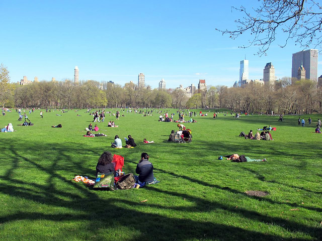 Central Park on Passover Day