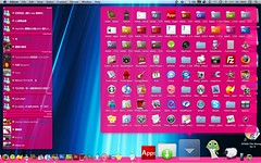 my mac desktop20090110