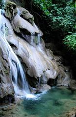 Fluye (7 facultades) Tags: naturaleza nature wa