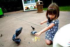 """Tuppence a Bag"" (Helena's Furie) Tags: public zoo houston bailey feedingthebirds pidgeons facebook houstonzoo wwwhelenasfuriephotographycom"