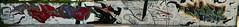 ebson lion teso dopher (Capras Crew) Tags: c capras caprascrew europa family font graffiti italy neverdie nofake original planet true truecaprasneverdie world lion carl182 bastian pedro dopher dofers gosh teso gola lazzaro explore