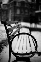 \O (Expectation Maximization) Tags: snow bench johnshopkins aperturepriority canonef50mmf12lusm canoneos5dmarkii