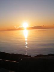 morning beauty (Piscesgirl2~) Tags: otw