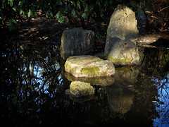 Late afternoon at the Japanese pond (Eva the Weaver) Tags: gteborg pond sweden stones gothenburg april botanicalgardens revisited botaniskatrdgrden patchesoflight gteborgsbotaniskatrdgrd