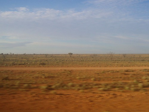 The Nullarbor. Indian Pacific Railway. Kalgoorlie - Adelaide. WA - SA. One hour East of Rawlinna WA