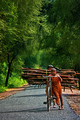 Damn-This-Rain (ZaIGHaM-IslaM) Tags: park pakistan rain kids is sunny national journey jungle punjab cycles lal sdk 70200f4l ryk 400d sohanra bahwalpur zagham