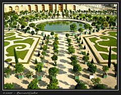 L'Orangerie du chteau de Versailles, France (Brn@rd) Tags: france castle bernard french europe jardin versailles chateau franais jardins orangerie mywinners gaillot bernardgaillot brnrd