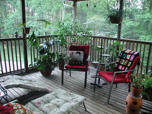 Sunday Morning Back Porch