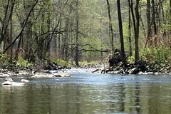 Moodna Creek (Hudson River Tributary), New York State (jag9889) Tags: ny newyork creek landscape spring rocks cornwall state kayaking hudsonriver brook orangecounty paddling 2009 nys moodna tributary moodnacreek y2009 jag9889