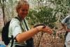 Judi takes her turn (wallygrom) Tags: africa madagascar millipede millipedes giantmillipede giantafricanmillipede ankarana diegosuarez antsiranana archispirostreptusgigas chongololo ankarananationalpark judicorney