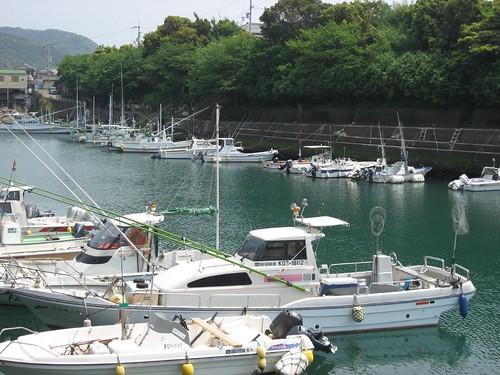 In comfortable wind,Shikoku