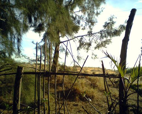 My Photos of Bacarra 3524862255_9c67de582e