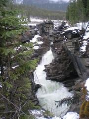 Athabasca Falls (pogonip89) Tags: albertacanada may2009