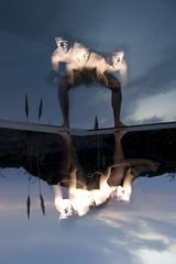 NARCISO 3 (Jpy) Tags: sea sky selfportrait reflection male water pool silhouette clouds self ego naked nude mirror agua legs cloudy chest flash nubes espejo reflejo multiple silueta autorretrato hombre narciso narcissus desnudo