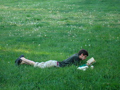 reading in the grass (zen) Tags: usa man green grass reading poetry asheville northcarolina dandelions inthepark readinginthepark westasheville zensutherland frenchbroadpark 20100424
