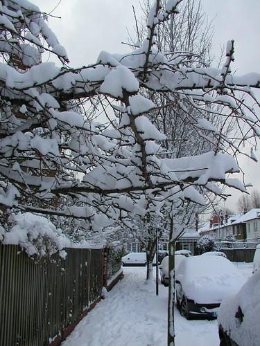London Snow HY 0109 007