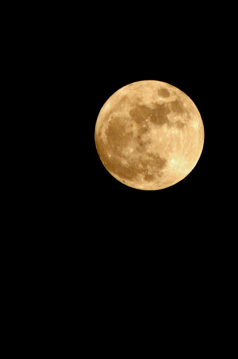 066/365 Moon