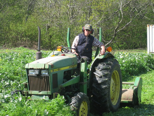 Paul mowing cover crop at Fat Cabbage Farm.