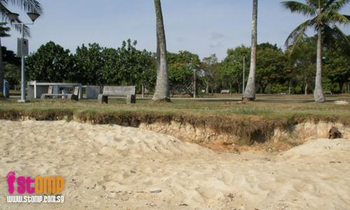 Serious soil erosion at Pasir Ris Park