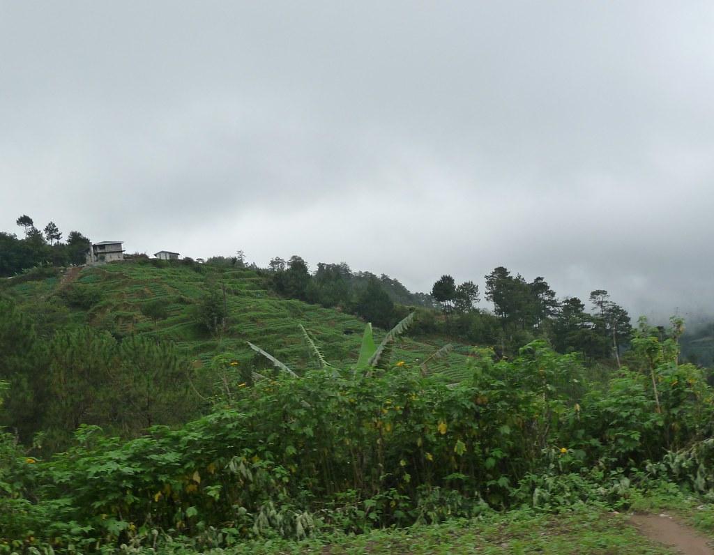 Route-Sagada-Baguio (89)