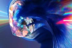bewegtes Herz (Ellenore56) Tags: blue light inspiration playing color colour reflection idea licht photo foto heart crystal magic perspective feather azure sparkle fantasy fantasia fancy refraction vista mephisto imagination outlook moment blau magical farbe reflexion cobaltblue spiegelung herz goethe idee perspektive invention reflektion lichtbrechung fantasie prisma phantasie augenblick kristall zitat feder phantasy faszination knigsblau royalblue azurblau kobaltblau mercuryblue refraktion magicformula dslra350 sonyalpha350 hexeneinmaleins imaginativeness 24juni2009 httpwwwyoutubecomwatchvskigdgvqbg ellenore56 faust1 quecksilberblau
