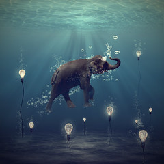the dreamer (Martine Roch) Tags: ocean blue light sea elephant water animal digital swimming swim square dream surreal bubbles fantasy imagination magical surrealistic manray petitechose idream martineroch artistictreasurechest