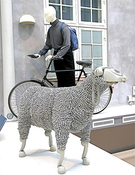 06_sheep08