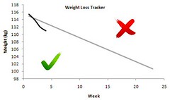 records graphs goals diet weightloss