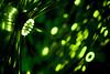 Lightwave 09, Irish Science Museum (jogorman) Tags: ireland light dublin irish blur green museum lights nikon dof bokeh f14 14 wave science eire led 09 50 narrow 2009 lightwave 50m lightemittingdiode jamesogorman nikoor d3x jogorman