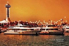 مــيناكْ قــَلـْبي وانـْتـَه لـِيَّه مـُـواني (eL reEem eL sro0o7e ♥) Tags: marina mall uae emirates abudhabi elreeem elsrooo7e