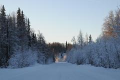 road alaska_7982 web