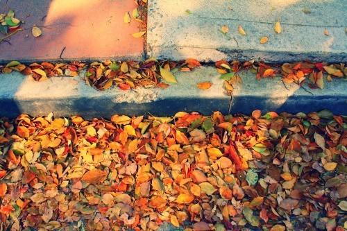my sidewalk