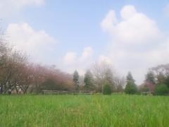 秋元牧場でのんびリフレッシュ