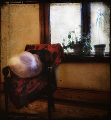 Sunday hat. (LveMeBreathless) Tags: plants white blanco window hat ventana chair plantas sunday textures silla sombrero domingo texturas memoriesbook