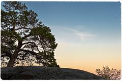 _DSC8577 (johan_wildenius) Tags: v gr vr vår solnedgång gränsö solnedgng solnedg grns