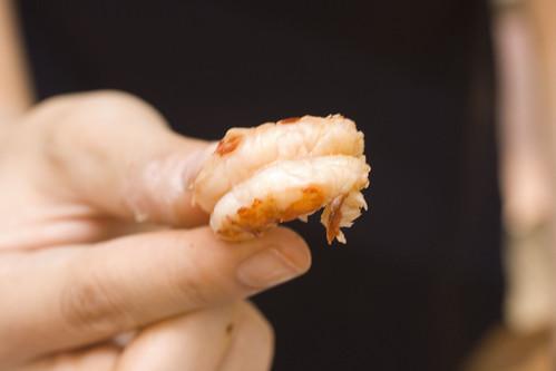 Crawfish Eating Demo 6